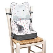 Baby Polar Gear Go Anywhere 3 Point Harness Booster Seat Echo